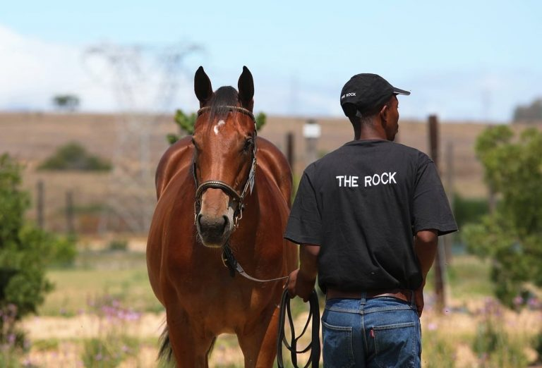 THE ROCK DOUBLY REPRESENTED AT CAPE SALE