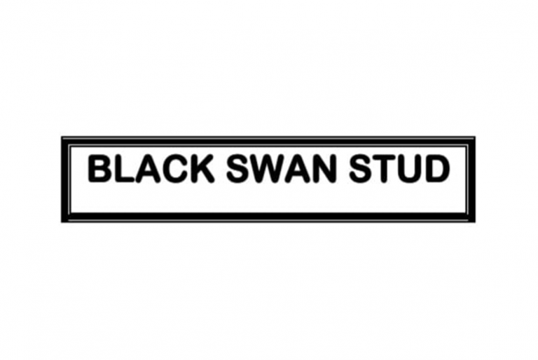 BLACK SWAN STUD TO OFFER CLASSY DRAFT AT CAPE SALE