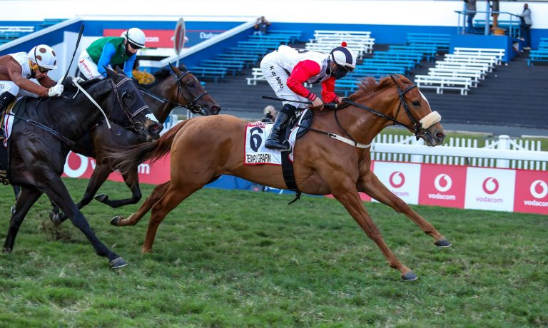 Read more about the article ARRAN STUD OFFER TWO SMASHING COLTS AT NATIONAL SALE