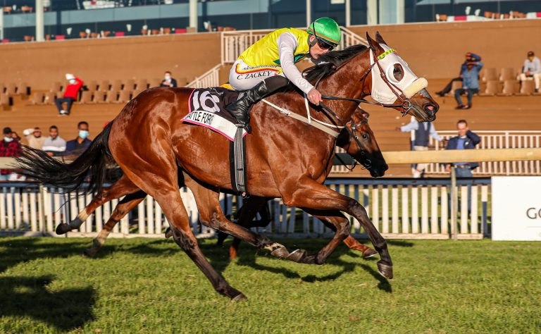 Read more about the article KZN YEARLING SALE GRADUATE LANDS GOLDEN HORSE SPRINT