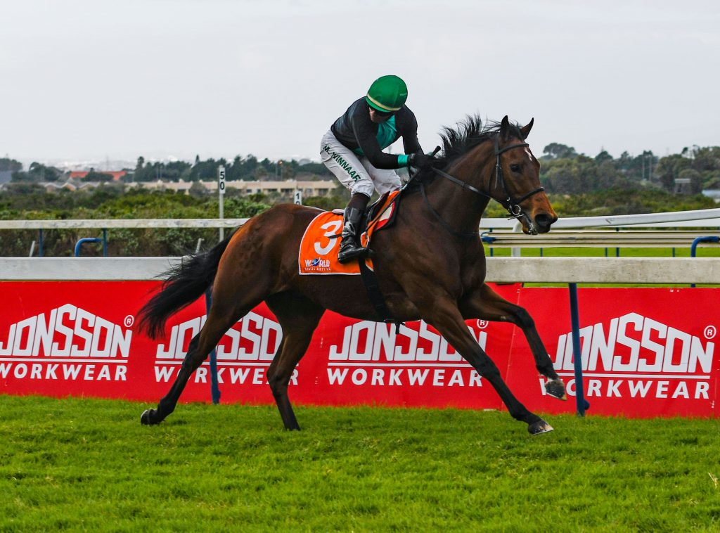 Read more about the article SATURDAY FEATURE RACE DOUBLE FOR BLOODSTOCK SOUTH AFRICA