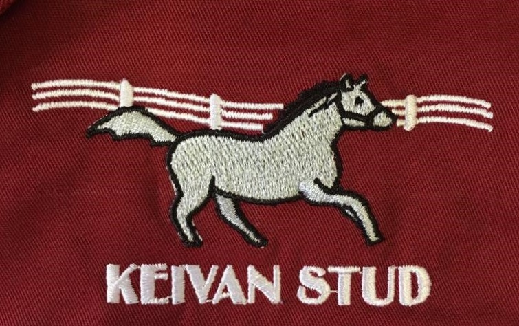 Read more about the article KEIVAN STUD BRING QUALITY QUARTET TO AUGUST SALE