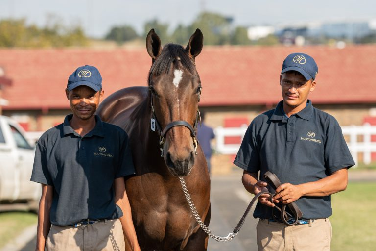 Read more about the article CAPTAIN'S RANSOM BREEDERS BRING FIVE TO AUGUST SALE