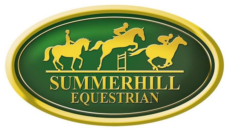 Read more about the article SUMMERHILL EQUESTRIAN OFFER CLASSY TRIO AT AUGUST SALE