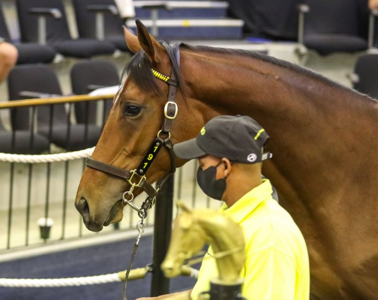Read more about the article POWER FACTOR TOPS DAY ONE OF NATIONAL SALE
